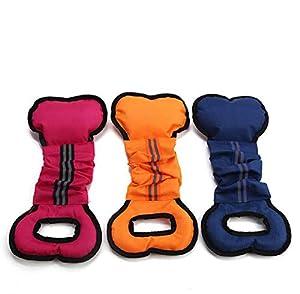 GDDYQ Jouets d'animal familier, Molars Chews Chien Morsure bâtons d'entraînement, approprié pour l'entraînement et l'exercice de Chien, Trois Morceaux