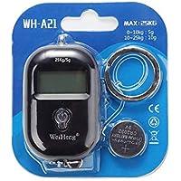 ZHANGYUGE 25Kg/5G Digital Báscula Colgante retroiluminación LCD Mini Pocket balanzas electrónicas Gancho Peso de