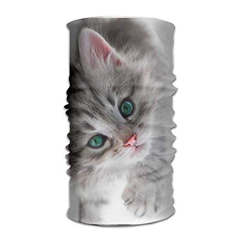 Osmykqe Headwear Multifunctional Sweatband Cat Kitten Kitty Face Mask Scarf Bandana Head Wrap Liner -