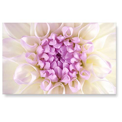 """LANA KK Küchenrückwand - Glasbild\""""Hanna\"""" Blumen und Natur edler Kunstdruck hinter 6 mm starkem Sicherheitsglas, Bunt, 90 x 60 x 0.6 cm"""