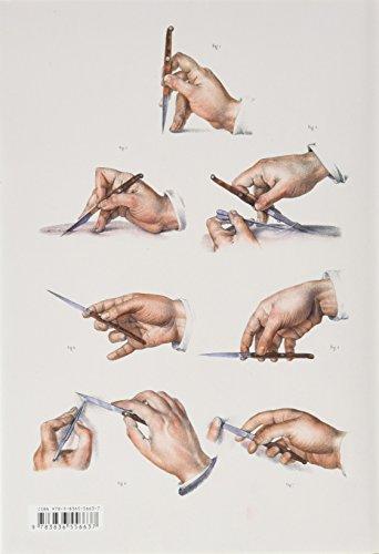 Bourgery. Atlas d anatomie humaine et de chirurgie par Jean-Marie Le Minor, Henri Sick