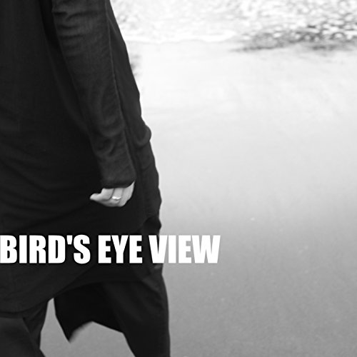 Bird's Eye View (Eye View Birds)