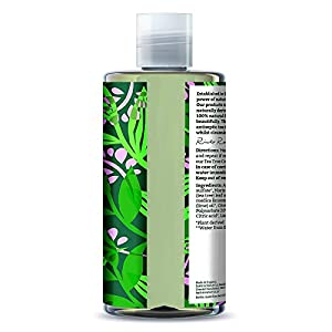 Faith in Nature - Shampoo Naturale al 100% Con The Biologico Estratto Direttamente dalla Pianta Per tutti I Tipi di Capelli - Per Lavaggi Frequenti - Senza Parabeni - Vegano