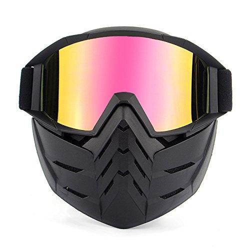 HCMAX Motorrad Schutzbrillen Brille Abnehmbare Gesichtsmaske Helm Nebelfest Winddicht Fahrradbrille zum Offroad Reiten Passen Männer Frau