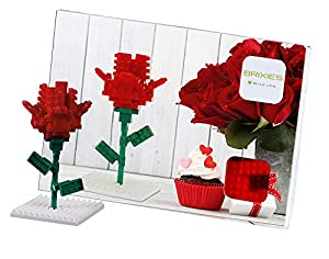 Brixies- Postal Rosa, (Schäfer Toy Company GmbH BX220.015)
