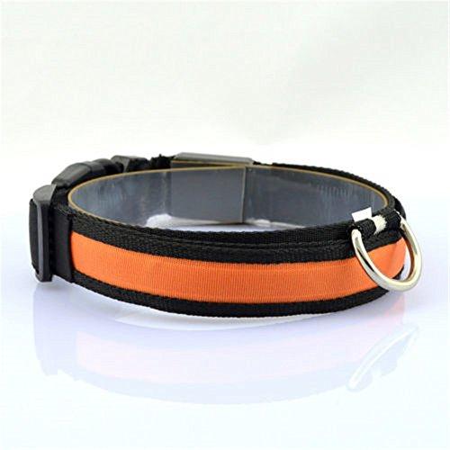 Minkoll Haustier-Hundekatzen-Sicherheits-Kragen, LED Nylonlicht-Haustier-Katzen-Hundeschutz-Blinkender Glühen-Kragen, Orange-L -