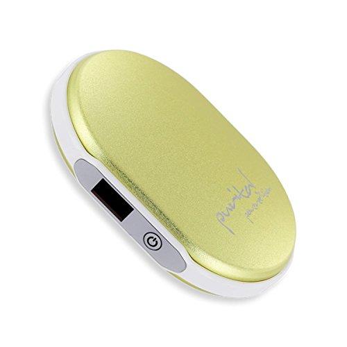 zung & Powerbank poweredition (Gold Style V1) - Premium Ladegerät USB Design Handwärmer & Taschenwärmer (Usb-ofen)