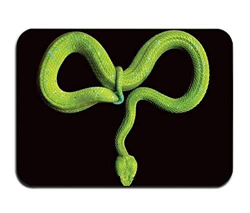 lijied Fashion 3D Print Door Mat Green Snake Welcome Doormat for Indoor Outdoor Welcome mat Square Area Rugs