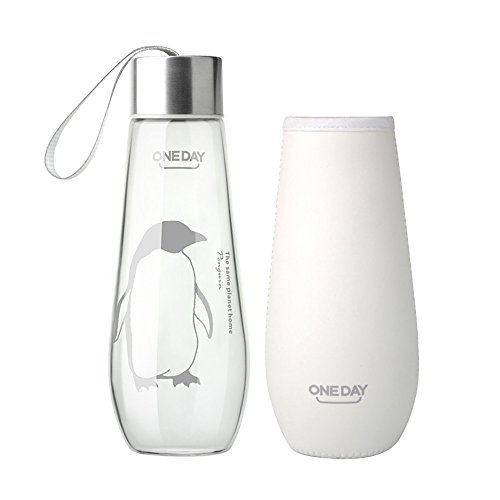 one-day-sb60024-480ml-borosilicate-glass-water-bottle-with-nylon-sleeve-portable-and-stylish-and-hig