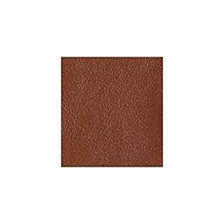 Alta Leather Leather Dye Colouring Leather-Colour Leather Car Kit, Ginger, 1 L