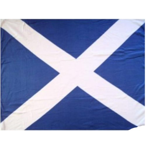 ws Blue & White 5ft x 3ft Polyester-Flagge (Fancy Dress Shops Online)