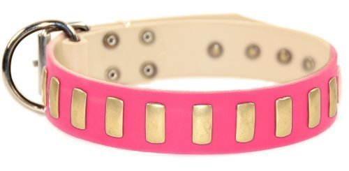 Nickel-plated Hardware (Dean & Tyler Hundehalsband Plated Perfection mit Messingplatten und Nickel-Hardware, 96,5 x 3,8 cm, für einen Halsumfang von 91,4-101,6 cm, Rosa)