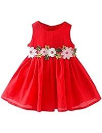 eb3a8e0d3 PAOLIAN Ropa para Vestidos para Bebe Niñas Verano Sin Manga Diseño de  Hilado Neto Florales Costura Vestidos Corta de 6 Meses - 24 Meses 2…