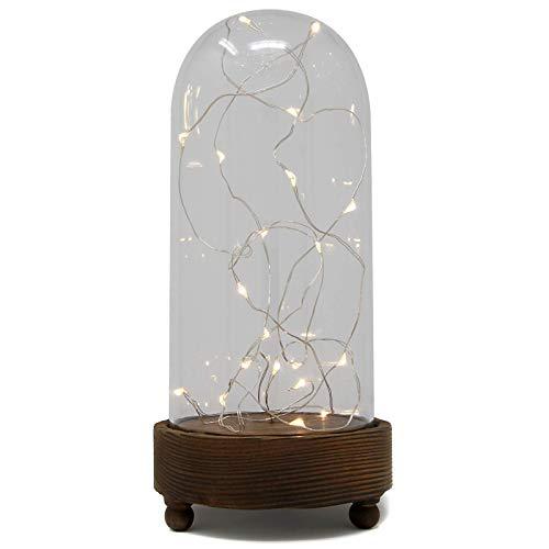 Maison & White Leuchten Rose Bell Jar | Verzauberte LED Glaskuppel | Die Schöne und das Biest Beleuchtete Display Dome (nur LEDs) -