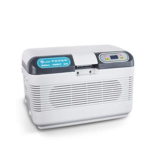 WJSW 12L 12V DC 220V AC Kühlschrank Mini-Kühlschrank Kleinstkühlschrank für Privathaushalte Auto-Kühlschrank mit doppeltem Verwendungszweck