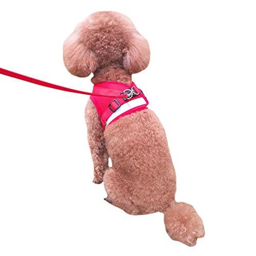 QiCheng&LYS Gilet da Viaggio in Maglia Traspirante con Cintura di Sicurezza per Cani e Gatti,Gilet di Sicurezza per Animali Domestici (Rosso, S)