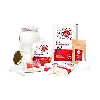 Original-Kombucha-Set-mit-vitalem-Kombuchapilz-und-Starter-fr-bis-zu-3-L-pro-Ansatz-mit-einfacher-Anleitung-Rezept-und-Erfolgsgarantie-von-Fairment