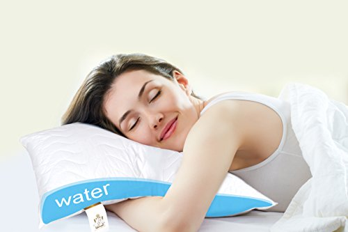 Duck Duck Goose Premium Water Pillow Waterbase Pillow for Neck Pain, with Extra Quilted Pillow Case 40 * 80cm