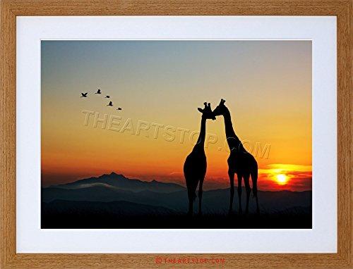 photo-animal-composition-giraffes-silhouette-sun-framed-print-f97x5459