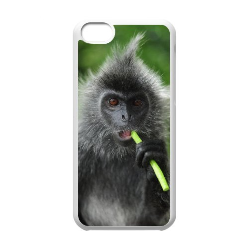 LP-LG Phone Case Of Monkey For Iphone 5C [Pattern-6] Pattern-6