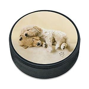 GRAPHICS & MORE Golden Retriever Puppies Dogs Friends Schlafender Eishockey Puck