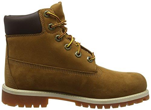 Timberland - Premium Boot - Mixte Junior Beige (Bianco)