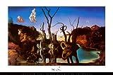 Poster 'Schwäne spiegeln Elefanten wider, ca. 1937', von Salvador Dalí, Größe: 91 x 61 cm