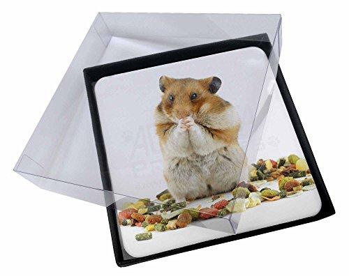 4x Lunch Box Hamster Bild Setzer gesetzt Weihnachtsgeschenk