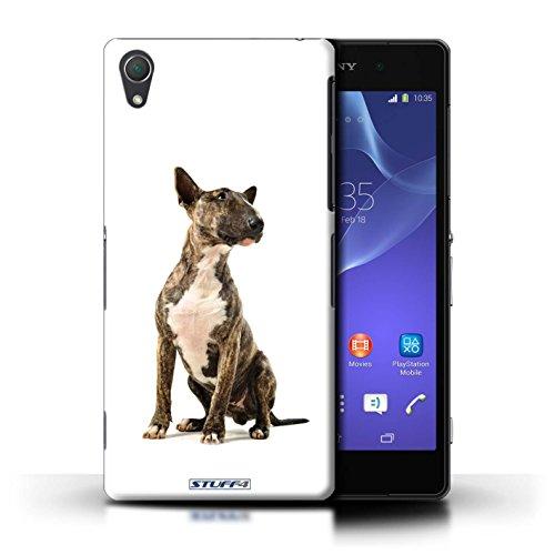 Kobalt® Imprimé Etui / Coque pour Sony Xperia Z2 / Cocker Spaniel conception / Série Chiens Bull Terrier