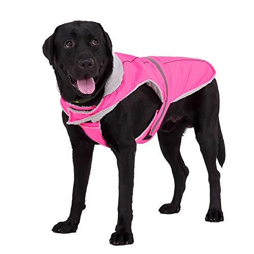 Handfly Chaqueta para Perros Chaqueta Impermeable para Perros Chaqueta Reflectante para Perros Ropa para Perros Abrigo para Perros de Invierno para Perros pequeños, medianos y Grandes