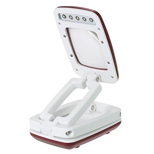 3x Magnifier Lampe (KKmoon 2 in 1 Multifunktional Leselupen mit 4 LEDs Gefaltet 3X Vergrößerungswerkzeug Magnifier Beleuchtete Lupe Handheld Schreibtisch Weiß und Rot)