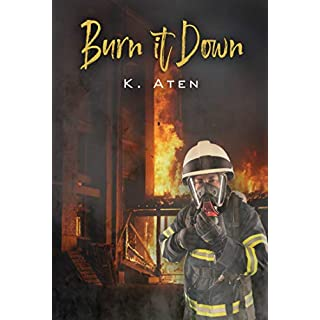 Burn It Down (English Edition)