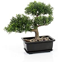 Bonsái de cedro artificial en maceta, 20 cm - Bonsái decorativo / Bonsai artificial de alta calidad - artplants