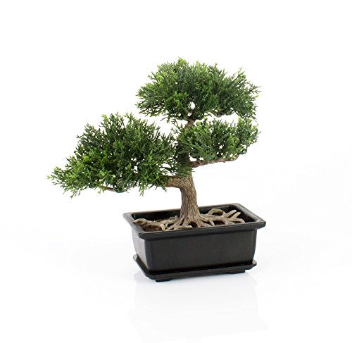 Bonsái de cedro artificial en maceta, 20 cm - Bonsái decorativo / Bonsai artificial de alta calidad - artplants
