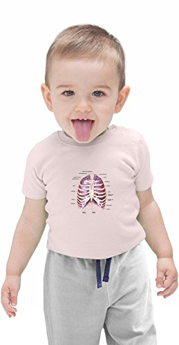 Lungs_infographic/for_white Organic Baby T-shirt 12 - 18 Months (Baby Tee White Rib)