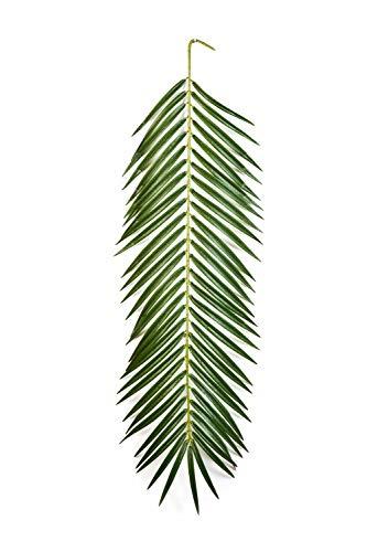 artplants Set 'Künstliche Phönix Palmwedel + Gratis UV Schutz Spray' – Kunstwedel Jaime, grün, 90 cm