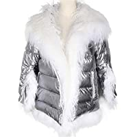 Vrouwen Winter Down Jacket Coat Long Warm Silver Parka Fur Duck Down jas Parka (Color : Silver, Size : Small)