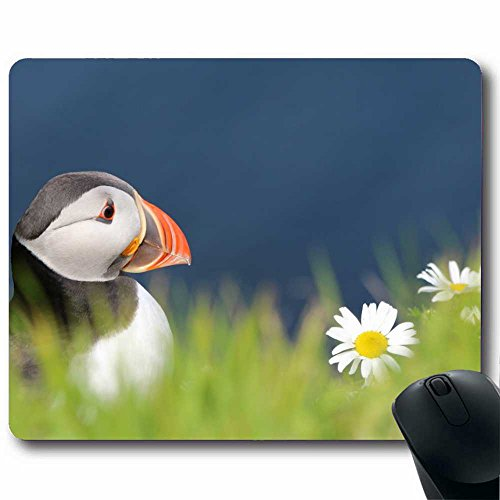 enhance-azul-de-goma-alfombrilla-gaming-mouse-pad-xl-con-superficie-de-baja-friccion-tela-animal-866