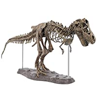 SODIAL Large Dinosaur Fossil Skull Animal Model Toys Tyrannosaurus Rex Assemble The Skeleton Model Furnishing Articles Decoration