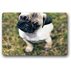 "'dalliy Carlino Fu?Alfombrillas Doormat Outdoor Indoor 23.6 ""x15.7 about 59.9 cmx39.8 cm, tela, b, 23.6"" x 15.7"""