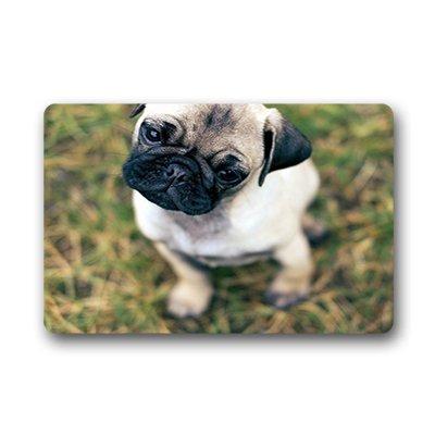 """Dalliy Pug Zerbino Personalizzato Doormat 18""""x30"""" about 46cmx76cm"""