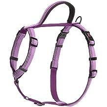 Halti arnés de púrpura grande
