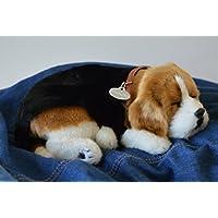 Breathable Beagle Puppy Companion Pet für Menschen mit Gedächtnisverlust vom Altern und Pflegepersonal preisvergleich bei billige-tabletten.eu