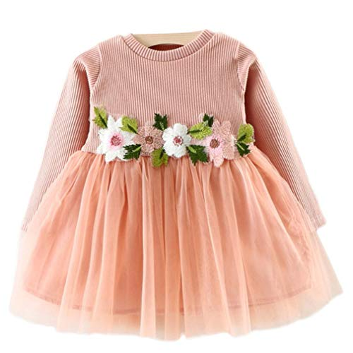 Lyrische Kinder Kostüm - zhbotaolang Mädchen Blumen Kleid Langen Ärmeln - Baby Tüll Party Prinzessin Kleider Kleidung auf 70cm 0-10 Monate (Rosa)