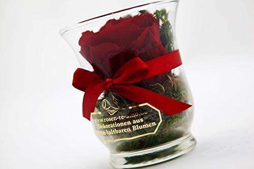 Rosen-Te-Amo - 1 Premium haltbare rote Rose in der Vase mit echten Bindegrün; Konservierte Rose im Glas: Blumenstrauß 3 Jahre haltbar ohne Wasser