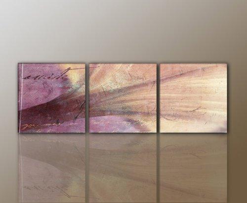 3 teiliges WANDBILD Abstrakt Blüte MODERN STYLISCH Leinwandbild (abstrakt-flower-3teilig-50×50 160x50cm) traumhaft Bilder fertig gerahmt mit Keilrahmen riesig. Ausführung Kunstdruck auf Leinwand. Günstig preiswert inkl Rahmen TOP MODERN BESTE QUALITÄT stylisch wertig aus Deutschland vom