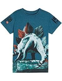 next Niños Camiseta estampada estegosaurio (3-16 años) Corte Estándar