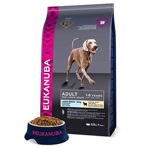 Eukanuba Premium Hundefutter mit Lamm & Reis, Trockenfutter für sensible Hunde großer Rassen (1 x 2,5 kg)
