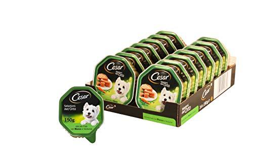 Cesar Selezioni dell'Orto Cibo per Cane, Delicato Paté con Manzo e Verdurine 150 g - 14 Vaschette