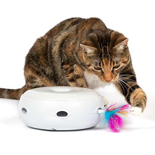 PetFusion AMBUSH INTERACTIVE Cat Toy electronic rotating FEATHER. (Smart modes, nighttime light, batteries included)
